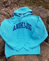 2017 Hooded Sweatshirt Heathered Aqua